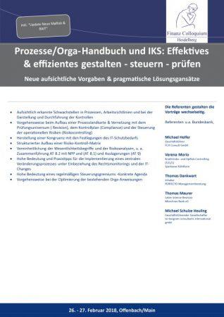 ProzesseOrgaHandbuch und IKS Effektives effizientes gestalten steuern pruefen