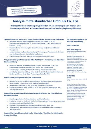 Analyse mittelstaendischer GmbH Co KGs