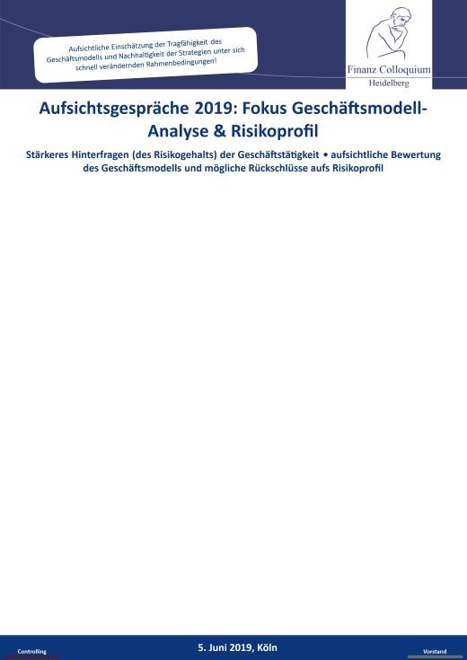 Aufsichtsgespraeche 2019 Fokus GeschaeftsmodellAnalyse Risikoprofil