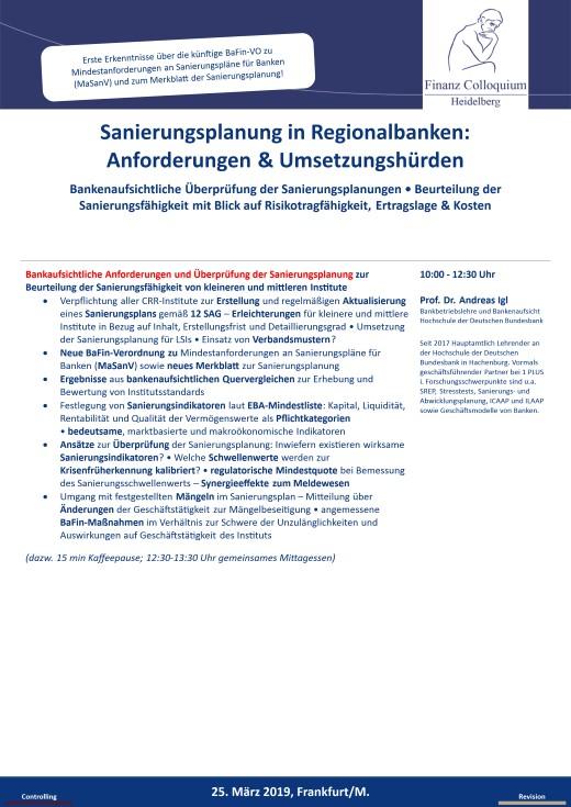 Sanierungsplanung in Regionalbanken Anforderungen Umsetzungshuerden
