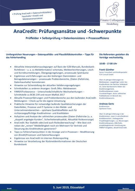 AnaCredit Pruefungsansaetze und Schwerpunkte